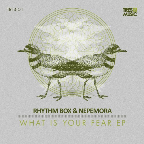 Rhythm Box, Nepemora - What Is Your Fear [TR14071]
